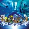 พิพิธภัณฑ์สัตว์น้ำ เชียงใหม่ (ผู้ใหญ่)