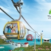 Singapore Cable Car Sky Network (ผู้ใหญ่)