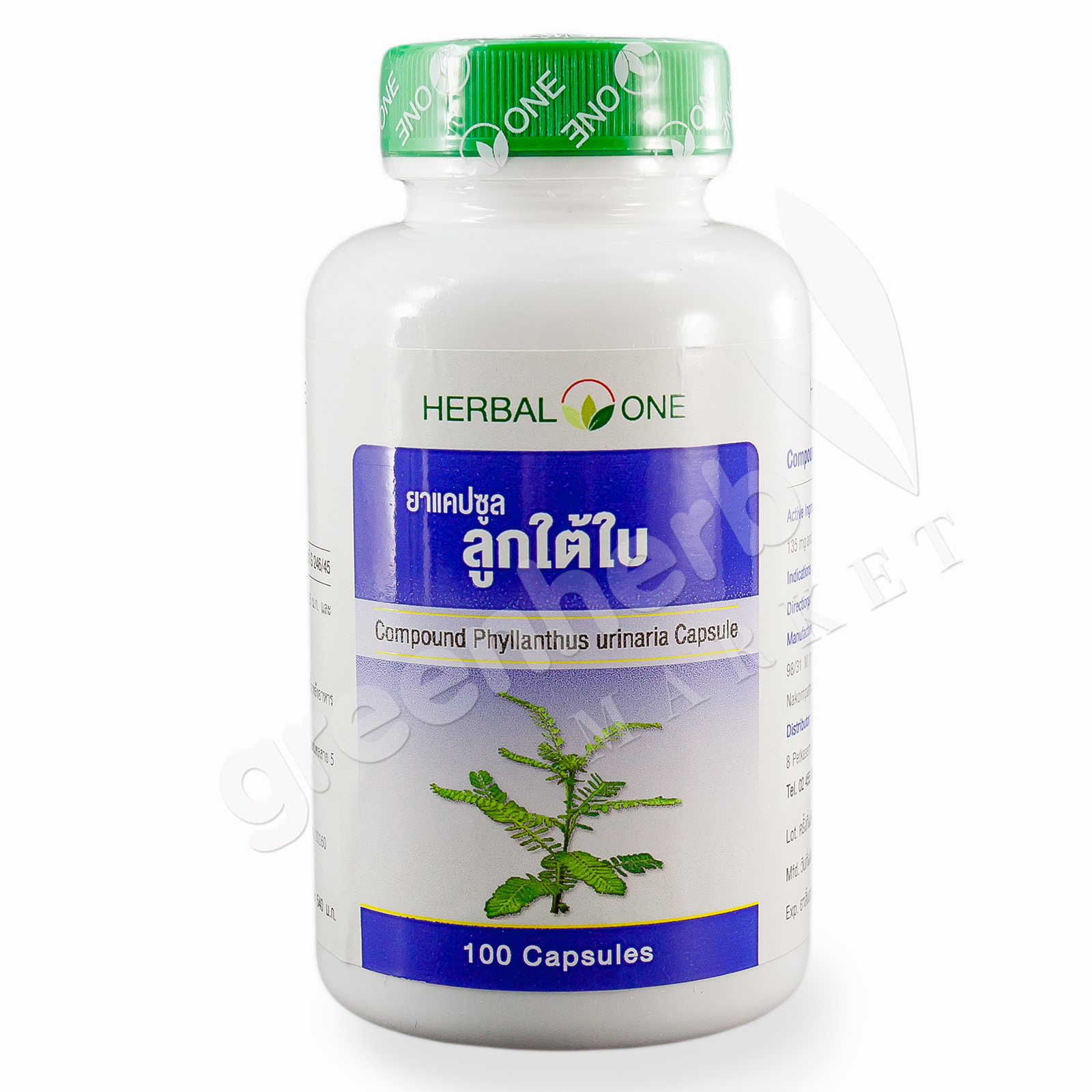Compound phyllanthus urinaria Capsule - Herbal One, OuayUn Osoth