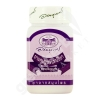 Janleela Capsules (400 mg. 70 Capsules) - Abhaiherb