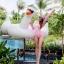 [พร้อมส่ง]BKN-124 ชุดว่ายน้ำแขนยาวสีชมพูขาว เสื้อเปิดร่องอกเซ็กซี่ (เสื้อแขนยาว+บิกินี่) thumbnail 7