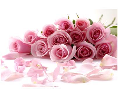 Rose Fragrance กุหลาบ(1kg)น้ำหอมกลิ่นกุหลาบ1 kg.=1,690บ.