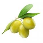 หัวน้ำหอม กลิ่น มะกอก Olive 1kg 005769