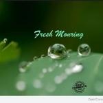 หัวน้ำหอม กลิ่น double (ดับเบิ้ล) Fresh Morning -PC0045 450 ml.