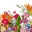 หัวน้ำหอม กลิ่น sweet floral -PC0091 thumbnail 1