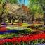 หัวน้ำหอม กลิ่น Garden Flower -PC0052 450 ml. thumbnail 1